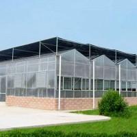 PC阳光板温室 pc阳光板温室大棚